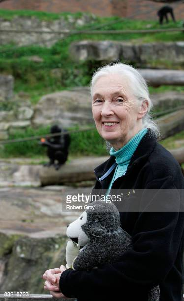 Dr Jane Goodall poses for a photo at Taronga Zoo on October 11, 2008 in Sydney, Australia. Goodall, the world renowned primatologist, has...