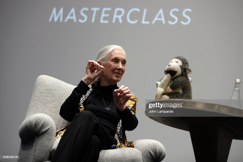 Dr. Jane Goodall speaks during the 'Dr. Jane Goodall's MasterClass' New York screening at the Whitby Hotel on September 12, 2017 in New York City.