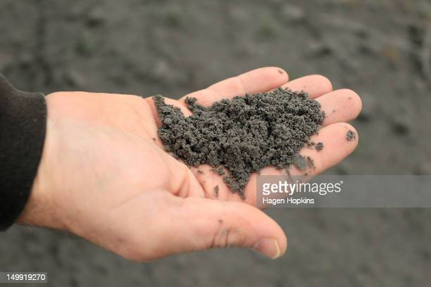 Dr Jon Procter from Massey University holds an ash sample after Mt Tongariro erupted for the first time in over 100 years on August 7 2012 in...