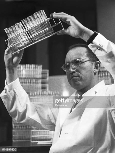 Dr. Jonas E. Salk, who developed the polio vaccine evaluated in the Francis Report, in his laboratory at the University of Pittsburgh. Dr. Salk's...