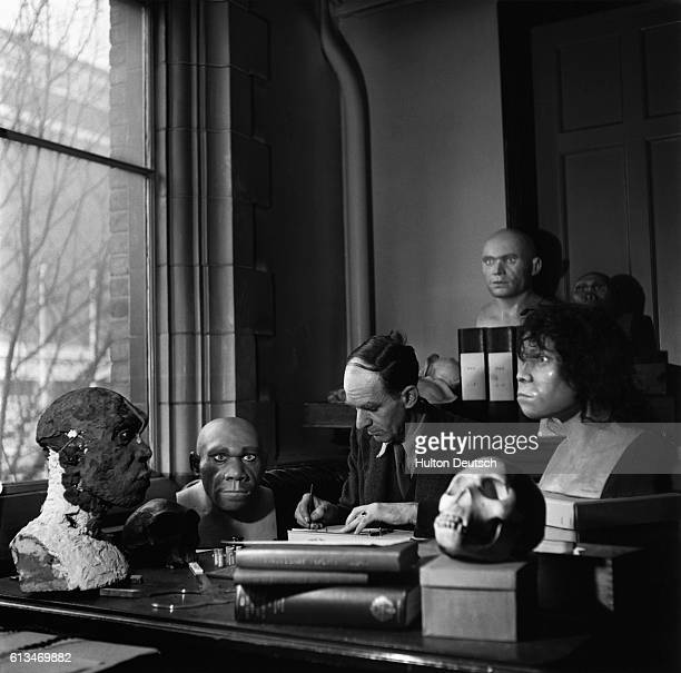 Dr Kenneth Oakley a researcher at the Natural History Museum at work in his study surrounded by models of prehistoric man