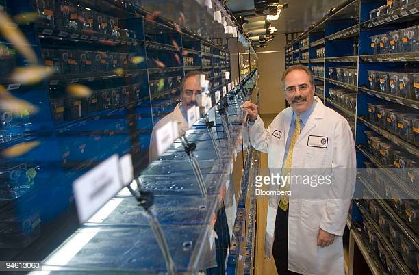 STORY Dr Leonard Zon director of the Stem Cell Center at Children's Hospital stands in his Zebra Fish research facility in Boston Massachusetts...