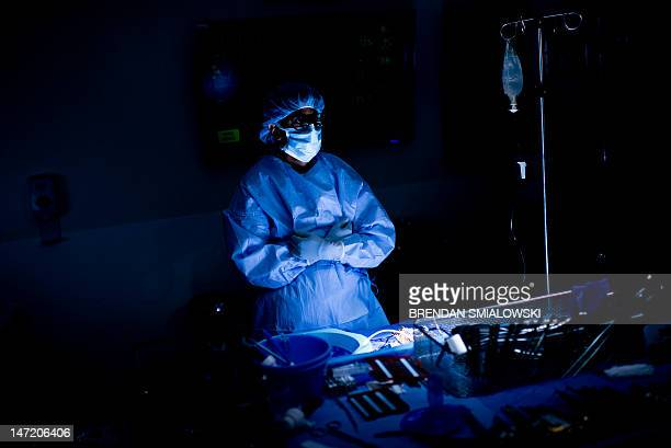 Dr Niraj Desai waits for a kidney to be removed from a donor during a kidney transplant at Johns Hopkins Hospital June 26 2012 in Baltimore Maryland...