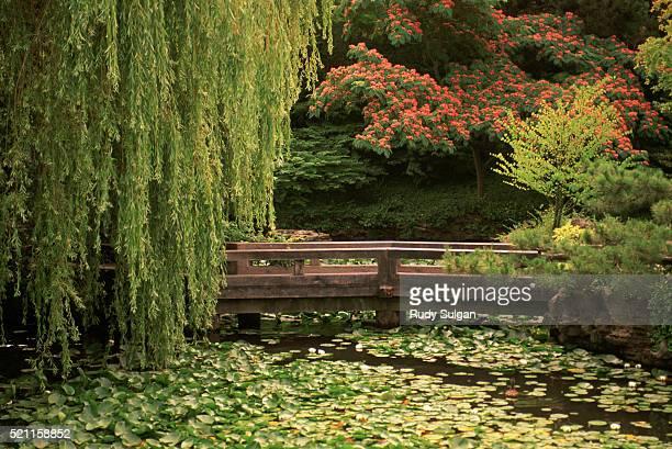 dr. sun yat-sen classical chinese garden - utc−10:00 stock pictures, royalty-free photos & images
