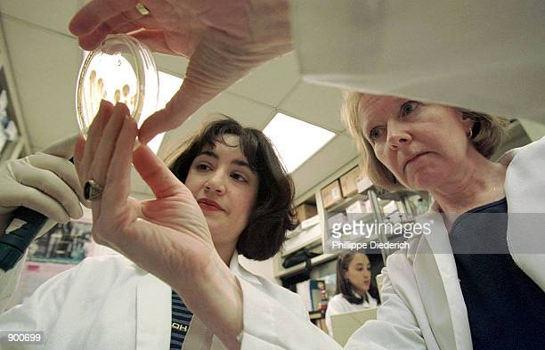 Dr Theresa M Koehler PhD Associate Professor of Microbiology and Molecular Genetics at The University Of Texas Medical School and Janice Succi a...