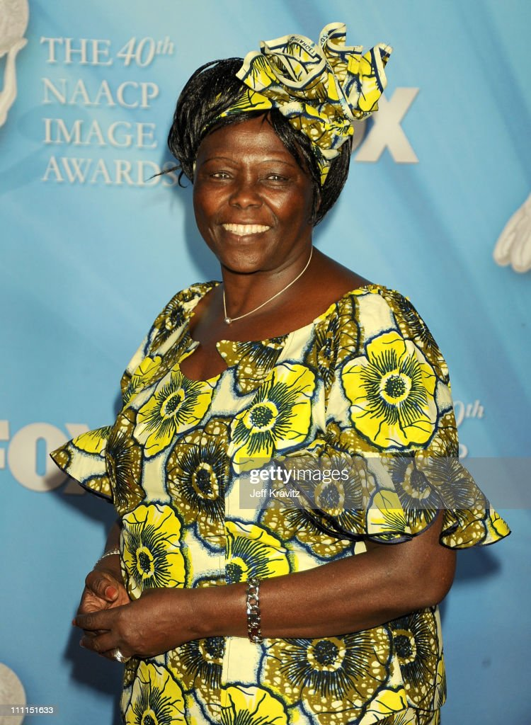 Dr. Wangari Maathai onstage at the 40th NAACP Image Awards held at the Shrine Auditorium on February 12, 2009 in Los Angeles, California.