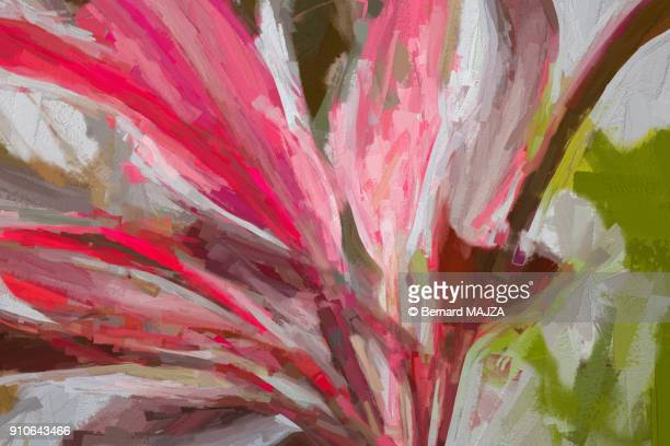dracaena - impressionism stock photos and pictures