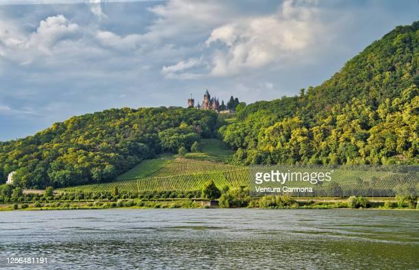 drachenburg and drachenfels, germany - ボン ストックフォトと画像
