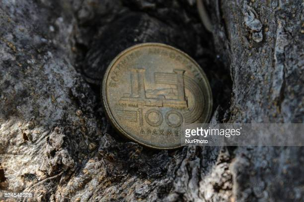 100 drachma coin of 1997 on an olive tree in Artaki on Euboea on July 30 2017