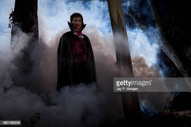 dracula in the forest - count dracula stock photos and pictures