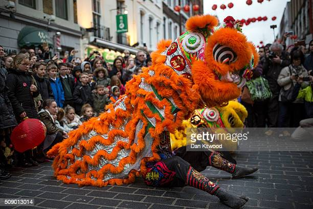 Dragon dancers perform in Chinatown during Chinese New Year celebrations on February 08 2016 in London England This coming Sunday will see the...