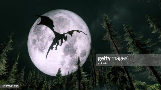 dragon flying in the night - dragon stock pictures, royalty-free photos & images