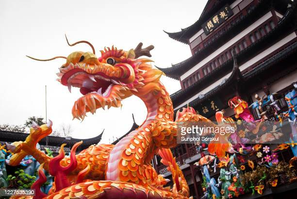 dragon lantern decoration during the chinese new year - dragon stock pictures, royalty-free photos & images