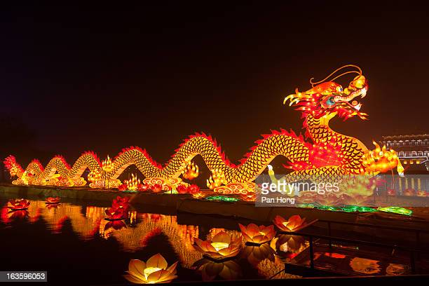 dragon lantern for celebrating spring festival - chinese dragon stock photos and pictures
