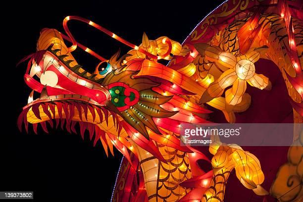 dragon lantern - dragon stock photos and pictures