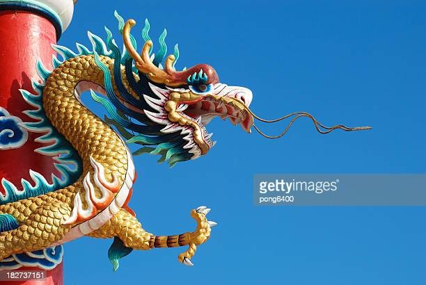 Dragon with a blue sky picture.