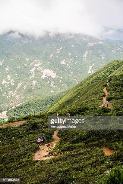 Dragon's Back Hiking Trail in the fog, Hong Kong