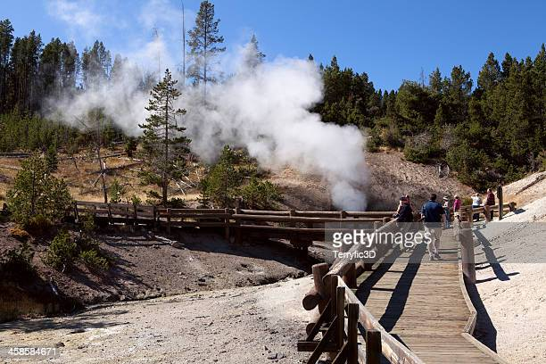 dragon's mouth caldron in yellowstone nat'l park - terryfic3d stock pictures, royalty-free photos & images