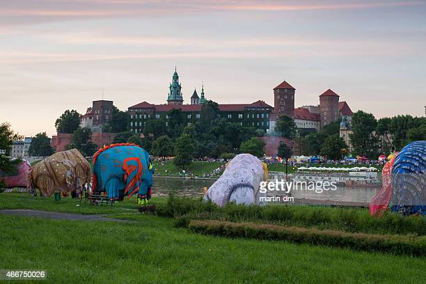 dragon's parade in krakow - martin dm stock pictures, royalty-free photos & images