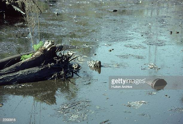 Drainage pipes empty into a polluted body of water 1980s
