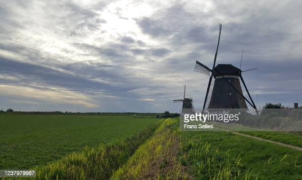 drainage windmills for the polder, the netherlands - frans sellies stockfoto's en -beelden