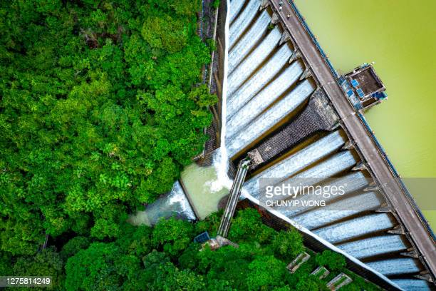 draining water from the kowloon reservoir at kam shan country park - waterfall stock pictures, royalty-free photos & images