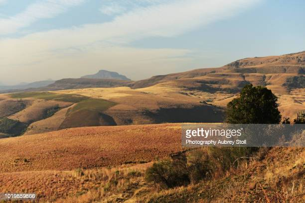 drakensberg mountain range - eastern cape stock pictures, royalty-free photos & images