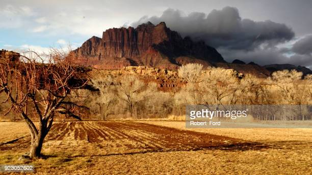 Dramatic cloudscape and dry winter pastures along Grafton Road below Mt Kinesava and backlit trees of the Virgin River in Rockville Utah