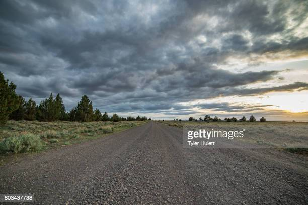 dramatic empty gravel road into the unknown - western juniper tree stock pictures, royalty-free photos & images