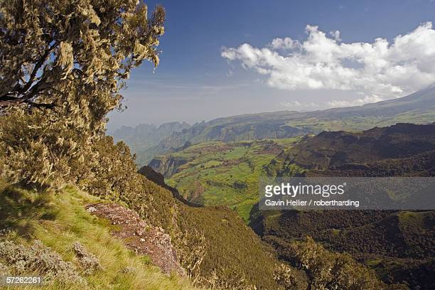 Dramatic mountain scenery from the area around Geech, UNESCO World Heritage Site, Simien Mountains National Park, The Ethiopian Highlands, Ethiopia, Africa
