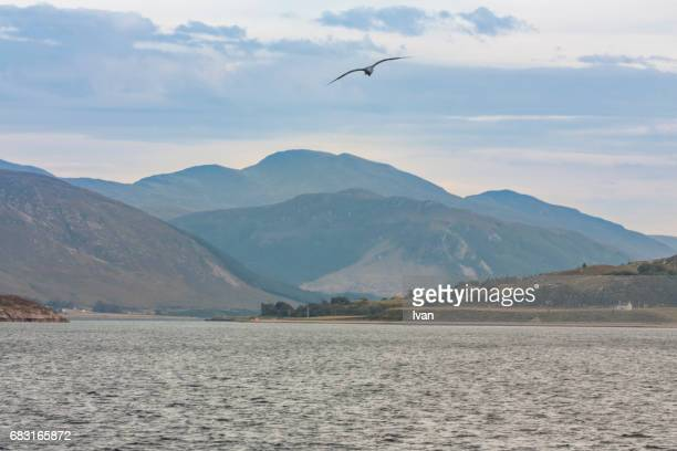 dramatic nature view with seagulls, lake and mountain in scottish nature park - glen sligachan photos et images de collection