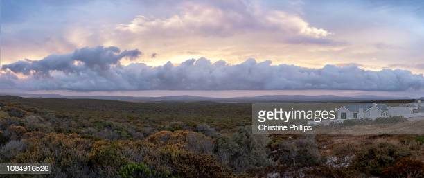 dramatic skies, clouds and fynbos in the south african west coast at sunset - fynbos fotografías e imágenes de stock