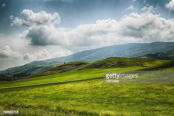 劇的な空グリーンフィールドと unplowed エリア - アナトリア ストックフォトと画像