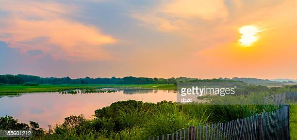 dramatic sky over natural wetlands in new jersey - new jersey stock pictures, royalty-free photos & images