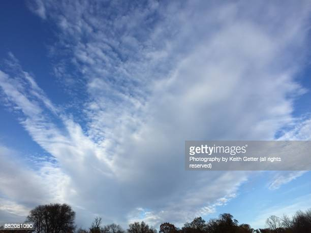 A dramatic sky with white clouds filling up a blue sky above tree tops