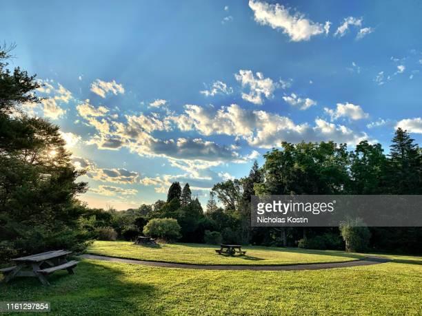 dramatic sunset at the park - parque natural fotografías e imágenes de stock