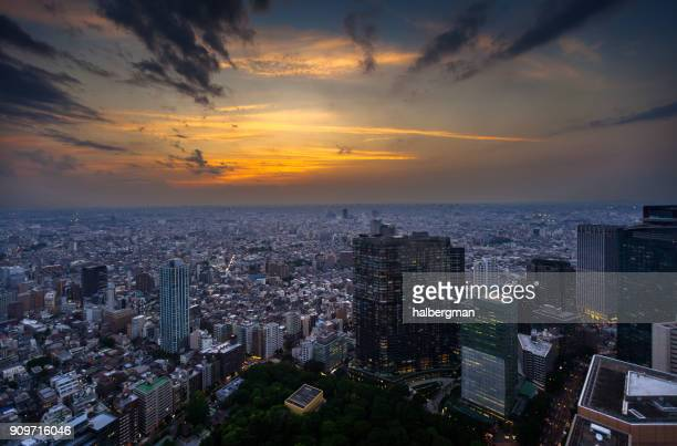 Dramatic View From High Above Tokyo at Sunset