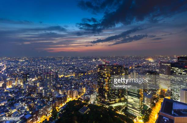 Dramatic View From High Above Tokyo at Twilight