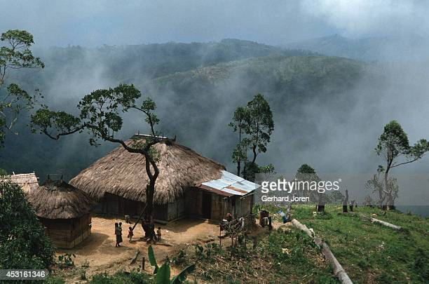 A dramatic view of a traditional mountain home lost among the clouds that cover the surrounding jungle 25 km south of the capital Dili