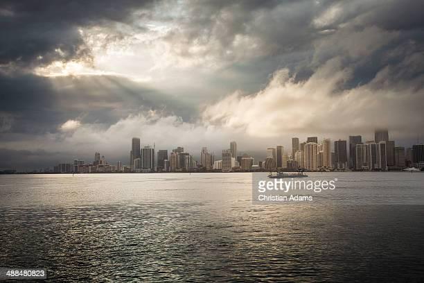Dramatic view onto Miami skyline