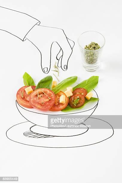 Drawing of hand sprinkling seasonings on salad