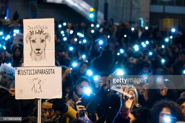 A drawing of the dog Sota is seen before a crowd of mobile phones lit at the end of the demonstration Third demonstration in Barcelona for the death...