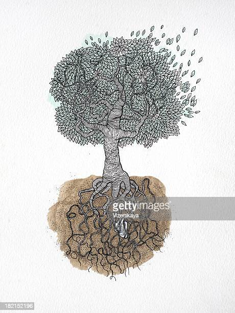drawing tree with roots - symbolism stock pictures, royalty-free photos & images