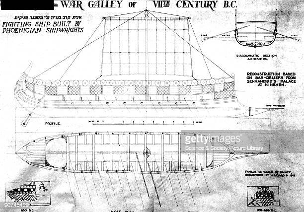 Drawings of a fighting ship built by Phoenician shipwrights The Phoenician bireme is one of the earliest examples of the two tier arrangement of oars...
