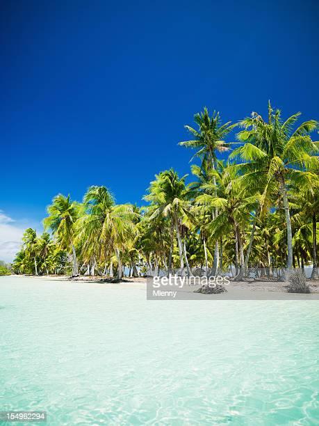 Dream Beach French Polynesia Fakarava Tuamotu Archipelago