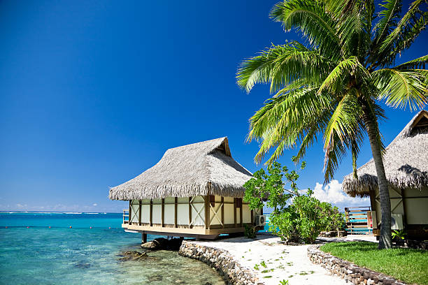 Dream Beach Moorea Island Tourist Resort