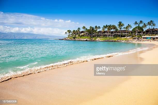 夢のビーチナピリゲッケイジュマウイ、ハワイ - ラハイナ ストックフォトと画像