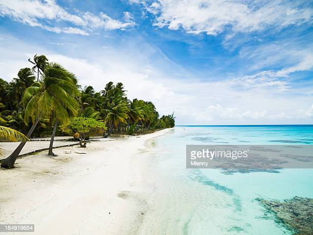 Dream Beach Tuamotu Archipelago Fakarava French Polynesia