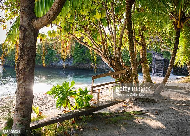 Dream Beach with a wooden bench beneath tropical trees