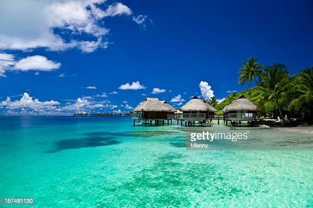 dream holiday luxury resort - shack stock pictures, royalty-free photos & images